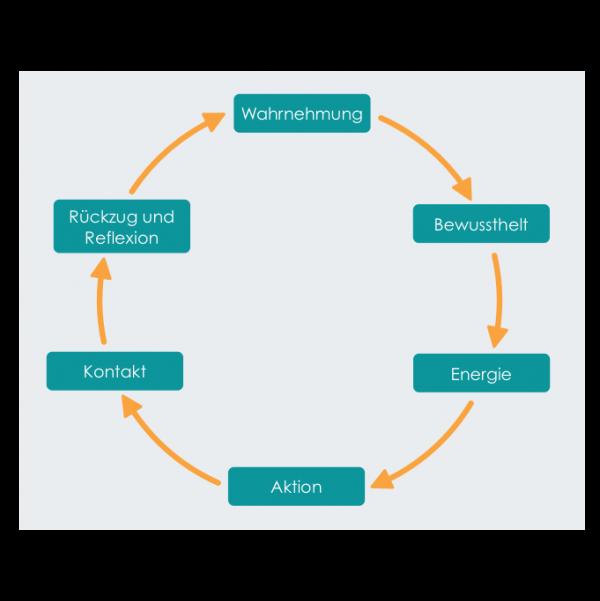 Veränderungsprozesse erfolgreich meistern ZVL Zyklus der Veraenderung und des Lernens 600x601